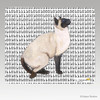 Siamese Cat Binary Code Mouse Pad
