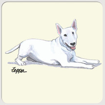 Bull Terrier Beverage Coasters