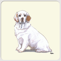Clumber Spaniel Beverage Coasters