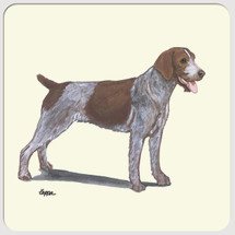 German Wirehaired Pointer Beverage Coasters