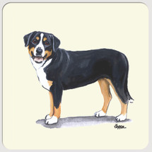 Greater Swiss Mountain Dog Beverage Coasters