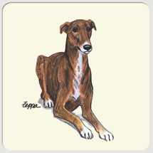 Greyhound Beverage Coasters