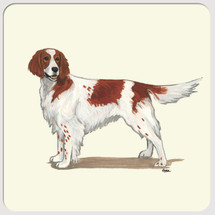 Irish Red & White Setter Beverage Coasters