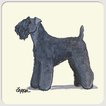 Kerry Blue Terrier Beverage Coasters