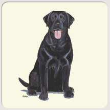 Labrador Retriever, Black Beverage Coasters
