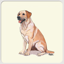 Labrador Retriever, Yellow Beverage Coasters