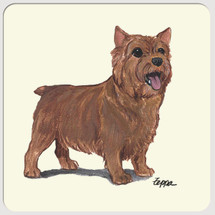 Norwich Terrier Beverage Coasters