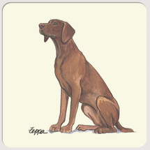 Vizsla Beverage Coasters