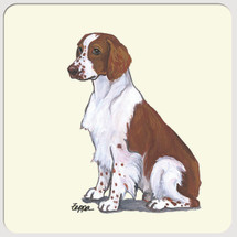 Welsh Springer Spaniel Beverage Coasters