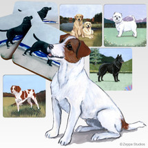Jack Russell Terrier Scenic Coasters