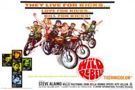 1967 'Wild Rebels' Movie Poster