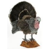 Hansa Turkey with Stand, Med 20''H (6847)