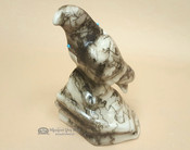 Navajo Indian Etched Horse Hair Pottery -Parrot