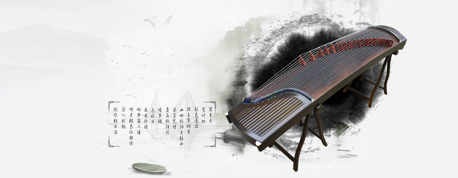 Chinese Musical Instrument Store