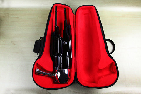Professional Level Chinese Ancient Instrument Sheng 17 Pipes With Case