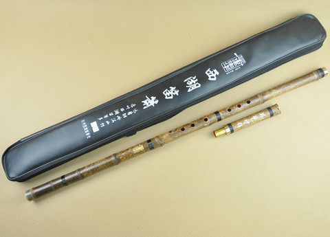 Professional Level Purple Bamboo Flute Xiao Instrument Chinese Shakuhachi 2 Sections