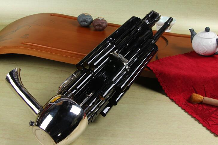 Concert Grade Chinese Ancient Instrument Sheng 21 Pipes With Case