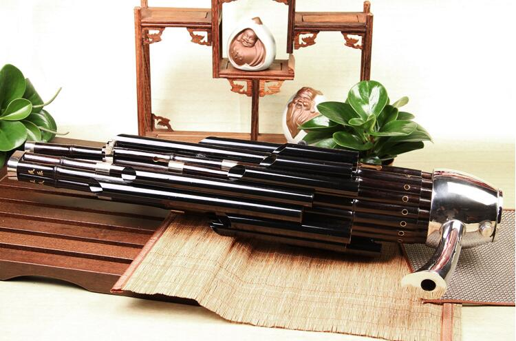 Concert Level Chinese Ancient Instrument Sheng 21 Pipes With Case