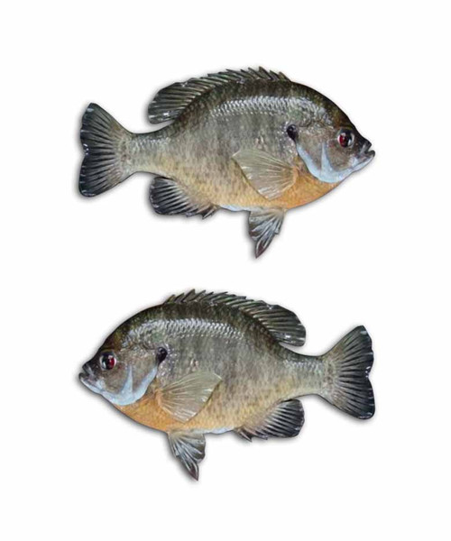 Bluegill Fishing Pond Stickers