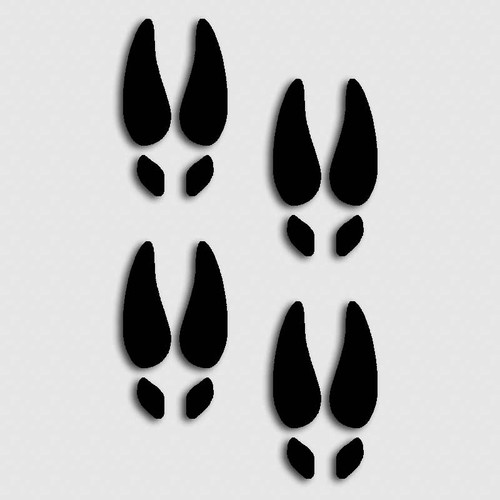 Whitetail Deer Foot Print Decals
