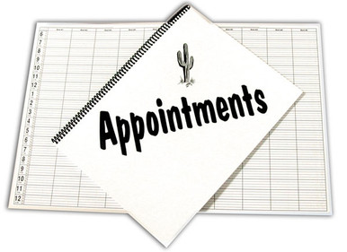 """9""""x12"""" 20 Minute appointment book"""