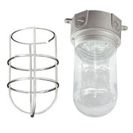 Light Fixture with Wire Guard (VXS-100-GLWG)