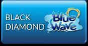 black-diamond-blue-wave-filters-pump-parts.png