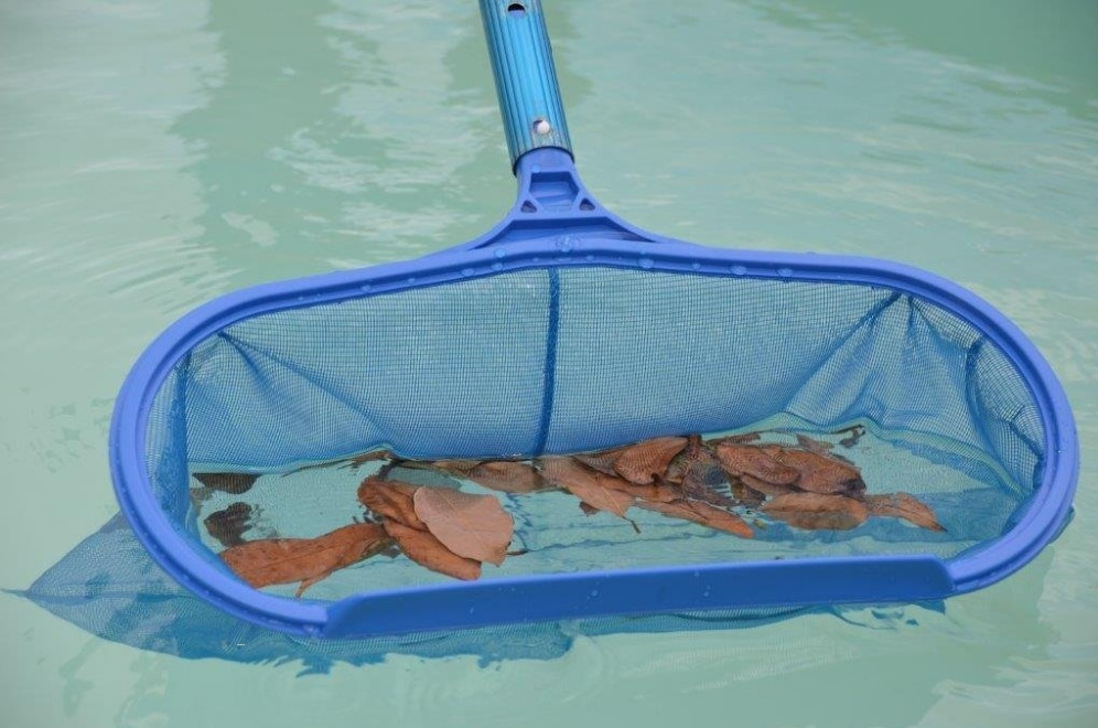 pool-rakes-no-more-leaves-bags-nets.png