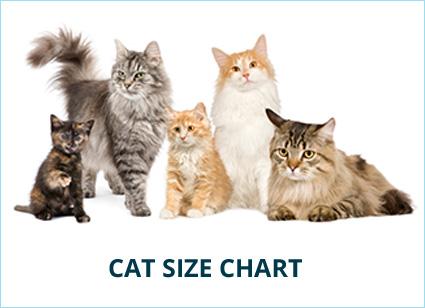 cat-size.jpg