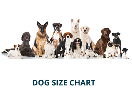 What Size Cat & Dog