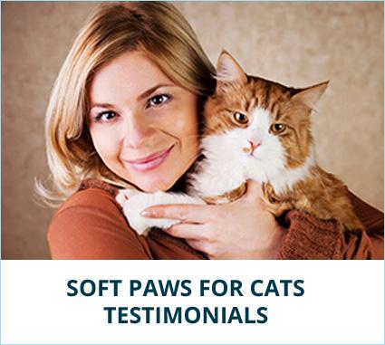 testimonial-cat-banner.jpg
