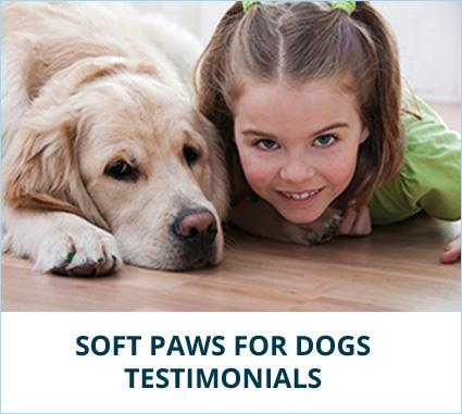 testimonial-dog-banner.jpg