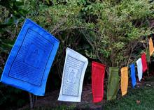 "Handmade Green Tara Tibetan Prayer Flags with English Translation (8""X12"")"