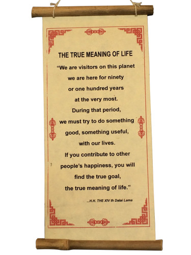 Dalai Lama Quate True Meaning of Life