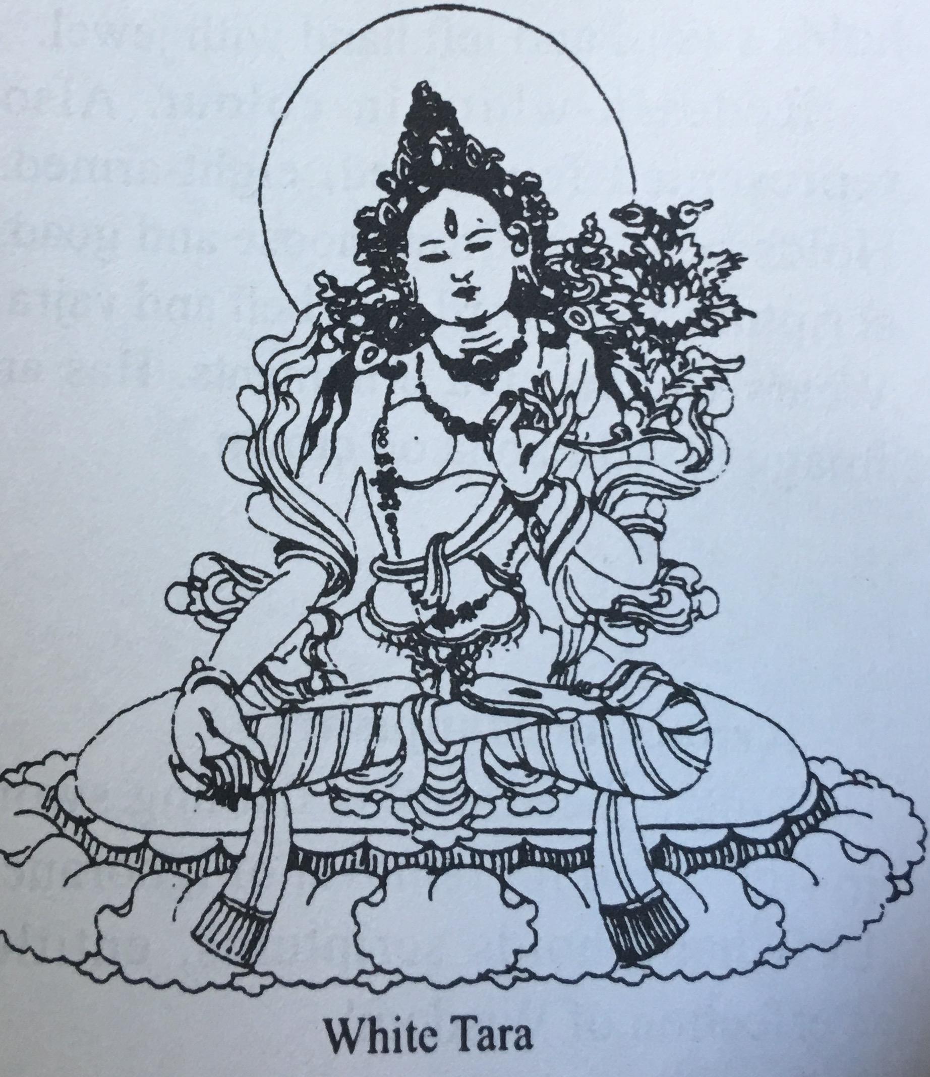 Tibetan Buddhist Deities And Symbols