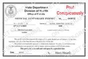 State Department Health Permit