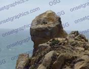 Rock Head