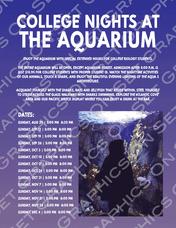 Aquarium Nights
