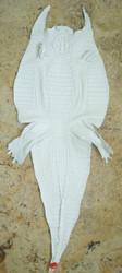 CAIMAN CROCODILE SKIN - WHITE - HORNBACK - 46cm