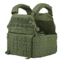 DCS special forces plate carrier warrior assault systems od green