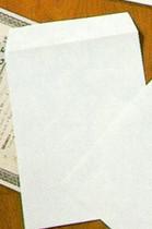 Tyvek A4 Envelope (single)