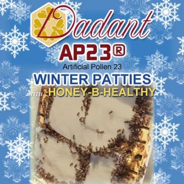 AP23 Winter Patties with Honey-B-Healthy - carton of 40