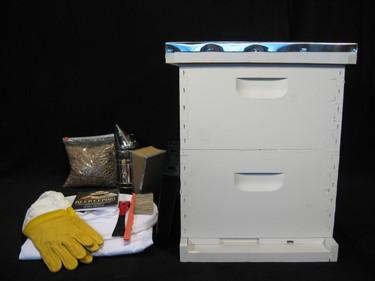 10 Frame Hobby Colony Starter Kit Painted