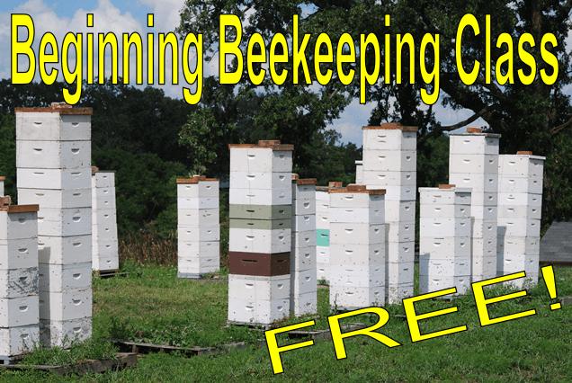 Free Beginning Beekeeping Class