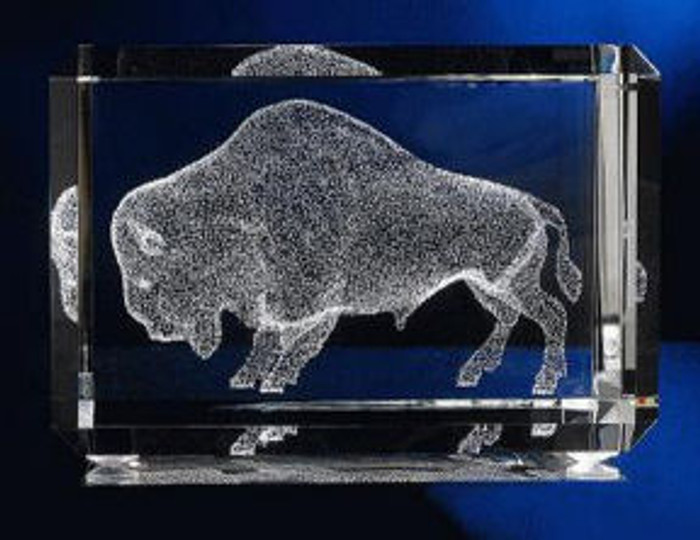 American Bison in Glass