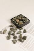 "Rhyolite Jasper Tumbled Stones 1/4 Lb Small Size 1-1.5"" Green Rainforest Jasper"