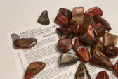 Rainbow Jasper 1/4 Lb Tumbled Stones Size Medium 1.25-2""