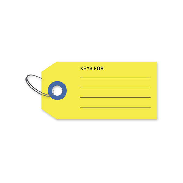 Auto Dealer Tags With Lines Box Of 500 Www Onlineriver Com