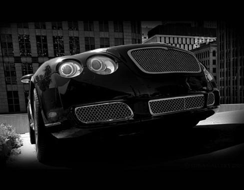 Bentley GT / GTC  Main Mesh Grille ; OE Weave 03-2009