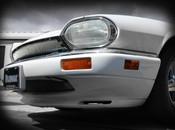 Jaguar XJS Mesh Grille Replacement Assembly (76-96 models)